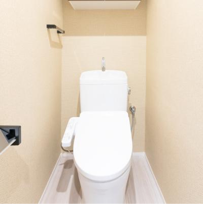 トイレのクリーニング|イメージ